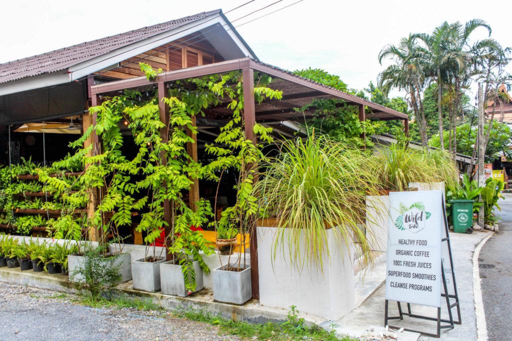 Wild Tribe Cafe