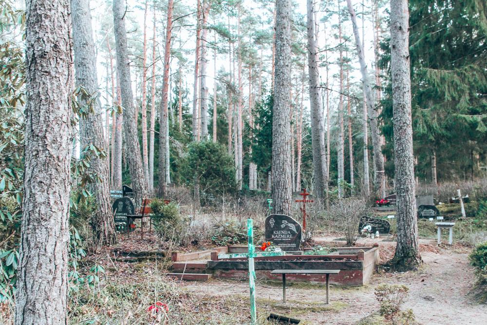 Graveyard in Estonian forest
