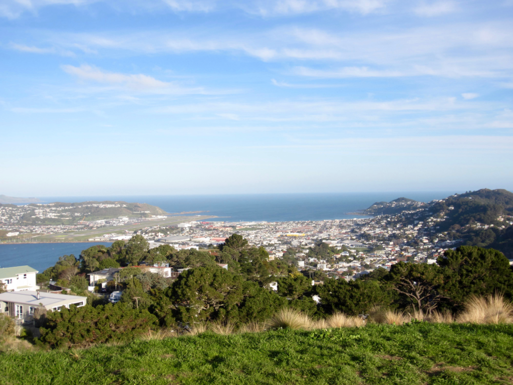 Wellington viewpoint