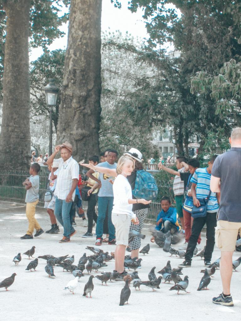 Feeding birds in Paris